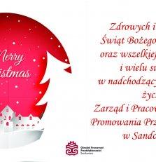 Wesołych Świąt Bożego Narodzenia życzy zespół Fundacji OPP